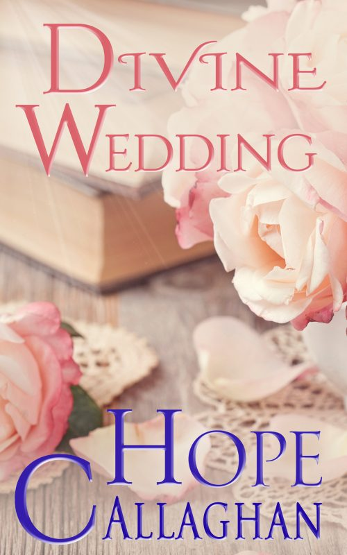 Divine Wedding: A Christian Cozy Mystery Novel
